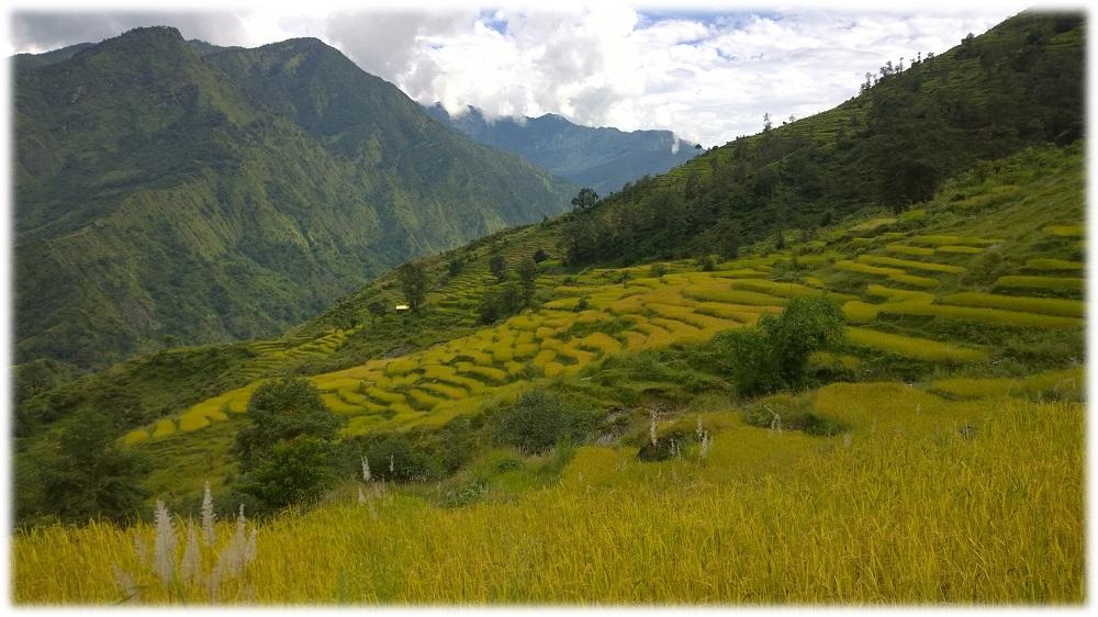 18-11-_nepal-pole